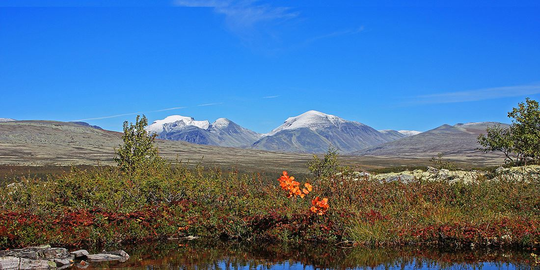 Mountains and plains in Rondane National Park
