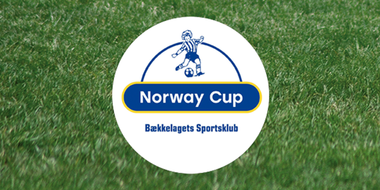 Football pitch with the Norway Cup logo